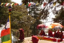 Haya Insence Puja