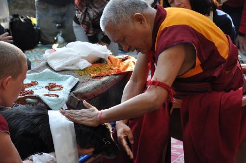 Lama_Zopa_Rinpoche_blesses_Kalu_JangsemSMALL