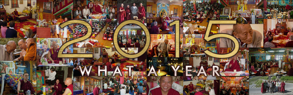 2015 – What a Year!