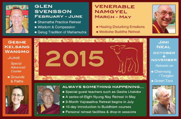 What's on in 2015?